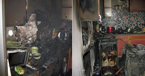 Gebäude in Wiener Neustadt evakuiert - Hund tot geborgen (Bild: FF Wiener Neustadt)