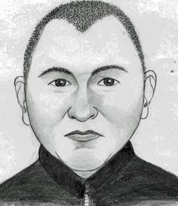 Polizei sucht mit Phantombild nach Einbrecher-Duo (Bild: SID NÖ)