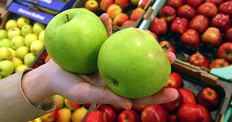 Welser Studenten erforschen alte Apfelsorten (Bild: dpa/A3397 Gero Breloer)