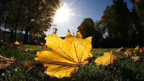 Nach Fröstelwetter winken wieder sonnige 20 Grad (Bild: APA/Helmut Fohringer)