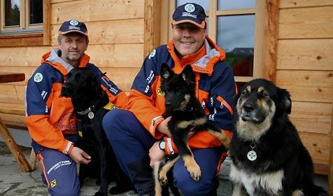 Bergretter tragen Hunde von der Zinkwand ins Tal (Bild: Bergrettung)