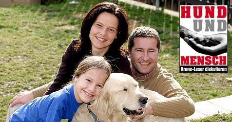 Vorschriften für Hundehalter - welche sind nötig? (Bild: Martin Jöchl)