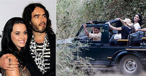 Katy Perrys  große, kunterbunte Dschungel-Hochzeit