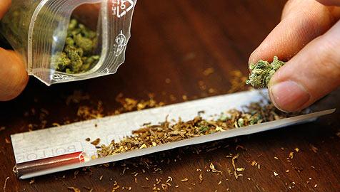 Dealer handelte in Salzburg mit 15 Kilo Marihuana