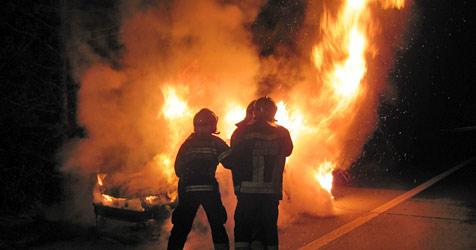 Fahrzeug stand mitten auf der A2 in Flammen (Bild: FF Wiener Neustadt)