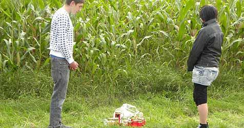 Maisfelder als Sichtbehinderung - Risiko für Verkehr (Bild: Vitzthum)
