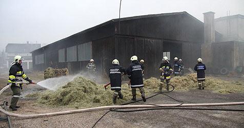 13-Jähriger löst Brand im Bezirk Gmunden aus (Bild: Krone Archiv)