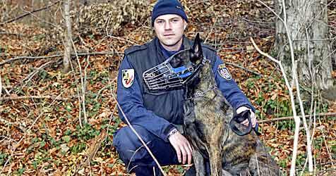 Polizeihund verbeißt sich in Arm von Verdächtigem (Bild: Markus Tschepp)
