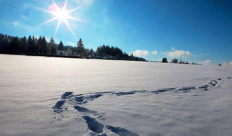 Viel weiße Pracht - Land ob der Enns ist Schnee-Kaiser (Bild: APA/rubra)