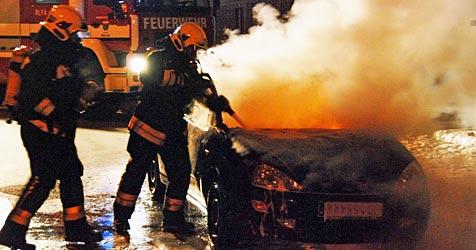 Pkw geht auf Mödlinger Parkplatz in Flammen auf (Bild: Herbert Wimmer/BFK Mödling)
