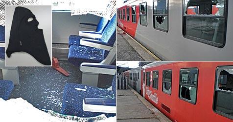 Jugendliche Rowdys zogen zu Silvester durch Krems (Bild: Sicherheitsdirektion NÖ)