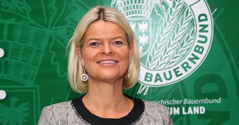 Klaudia Tanner ist neue Bauernbund-Direktorin (Bild: NÖ Bauernbund)