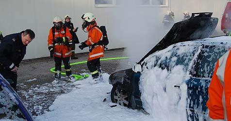 Passant rettet Mann aus brennendem Auto (Bild: FF Mauthausen)