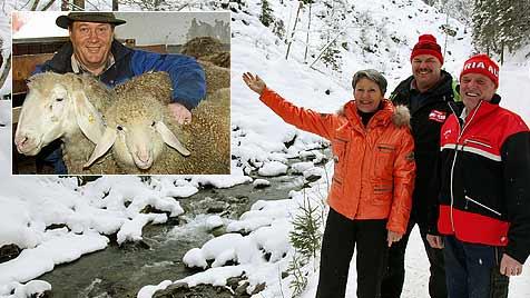 Verirrte Schafe nahe Saalbach aus dem Eis gerettet (Bild: Niki Faistauer)