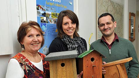 """""""Sozialer Wohnbau"""" für Salzburgs Singvögel (Bild: Wolfgang Weber)"""