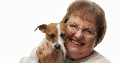 Seniorenreisen mit Hund werden immer beliebter (Bild: © 2011 Photos.com, a division of Getty Images)