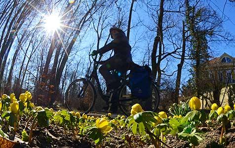 15 Grad am Wochenende - der Frühling kommt