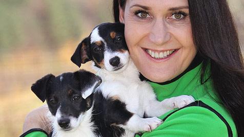 Gütesiegel für Hundetrainer (Bild: Peter Tomschi)