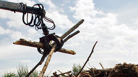 68-Jähriger im Wald von Kran getroffen und getötet (Bild: dpa/dpaweb/dpa/A3446 Patrick Seeger)