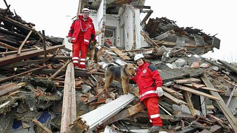 Salzburger Ehepaar sucht mit Hunden in Trümmern (Bild: Markus Tschepp)