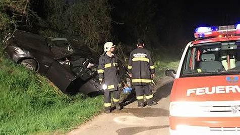 Lenker und Sohn bei Crash schwer verletzt (Bild: FF Mondsee)
