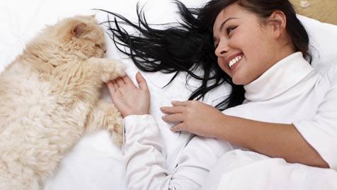 Schütze deine Katze vor Vergiftung durch Pflanzen (Bild: Photos.com/Getty Images)
