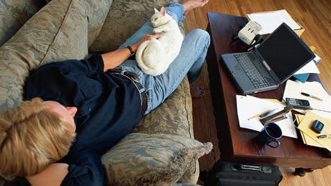 Wie deine Katze dir hilft, heimisch zu werden (Bild: Photos.com/Getty Images)