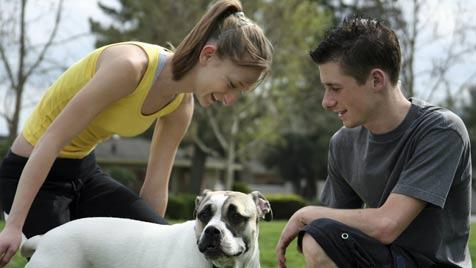 Ab sofort ist der Hundeführschein Pflicht (Bild: Photos.com/Getty Images)