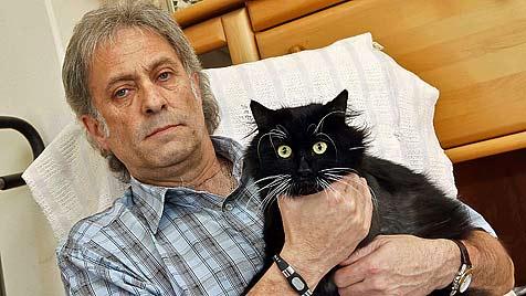 Katze verliert Pfote nach Schuss-Attentat in Gnigl (Bild: Markus Tschepp)