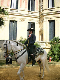 Pferde, Flamenco und Sherry: Die Asse Andalusiens (Bild: Gabriela Gödel)