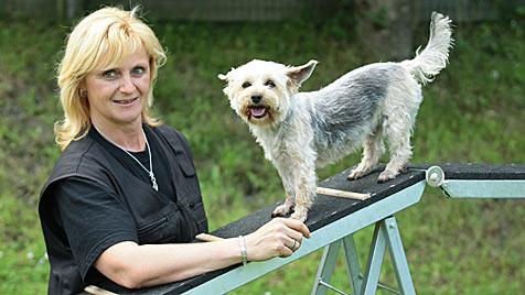 """Neues """"Hundehotel"""" in Salzburg ist in Europa einzigartig (Bild: Niki Faistauer)"""