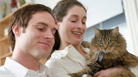 Wohin mit Miezi nach der Trennung? (Bild: Photos.com/Getty Images)