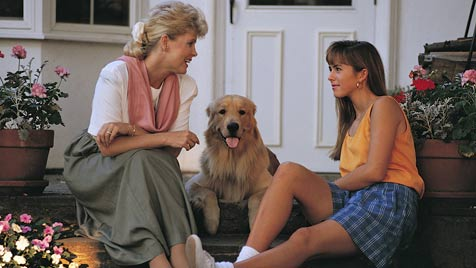 Hundehalter sind besonders kommunikativ (Bild: thinkstockphotos.de)