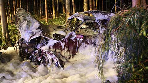 Pkw reißt bei Unfall Bäume um und fängt Feuer (Bild: Lukas Hürner, BFKDO Scheibbs)