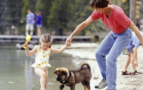 Unbeschwerter Badespaß für Hund und Halter (Bild: thinkstockphotos.de)