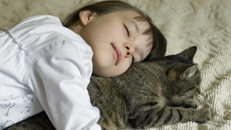 Ein Fünftel aller Katzen wird für Kinder angeschafft (Bild: thinkstockphotos.de)