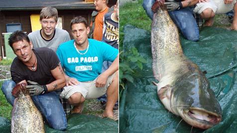 Hobbyangler zog in Bürmoos 38-Kilo-Waller aus dem See (Bild: Privat)