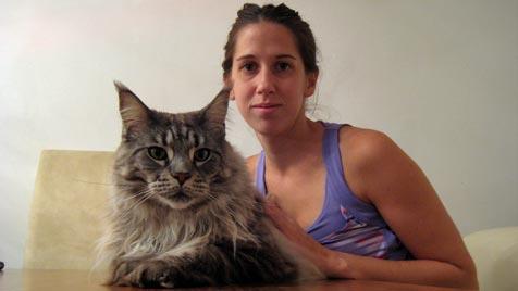 """""""Al Capone"""" ist die witzigste Katze (Bild: Stefanie Pillwein)"""