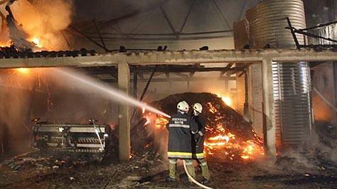 Feuerteufel schlägt in Gemeinde in OÖ zum dritten Mal zu (Bild: FF Naarn)