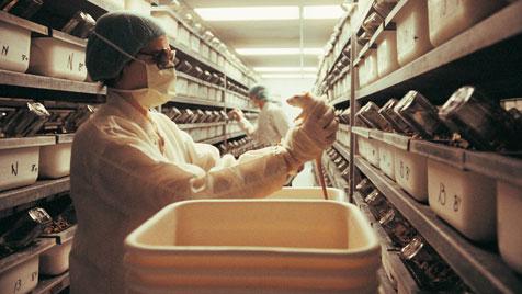 Dein Einkauf als Zeichen gegen Tierversuche (Bild: thinkstockphotos.de)
