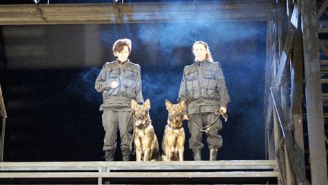 Schäferhunde als Schauspieler im Burgtheater (Bild: Christian Parth, Deutsche Schäferhunde vom Retzerl)