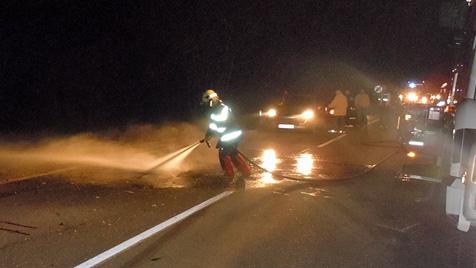 Entlaufene Esel und Pferde lösen zwei Verkehrsunfälle aus (Bild: FF Neuberg a.d. Mürz)