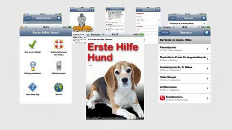 Erste Hilfe für den Hund neu als App für das Smartphone (Bild: Erste Hilfe Hund)