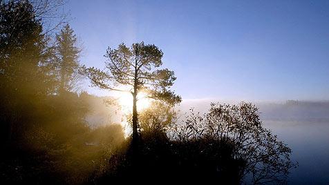 http://imgl.krone.at/Bilder/2011/11/13/Taumhaftes_Herbstwetter_dauert_an-Viel_Sonnenschein-Story-302275_476x268px_1_l71bM_0s44TMU.jpg