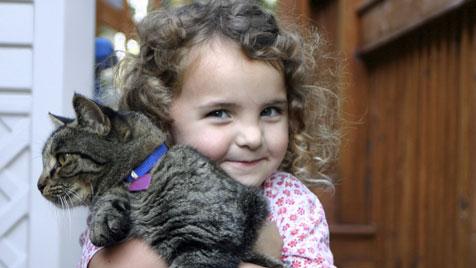 Wenn ein Stubentiger auf den Nachwuchs trifft (Bild: Photos.com/Getty Images)