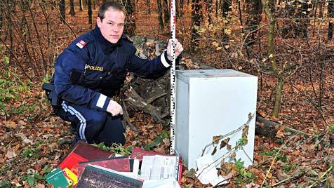 Dreiste Einbrecher lassen bei Florianis in NÖ Safe mitgehen (Bild: fotoplutsch.at)