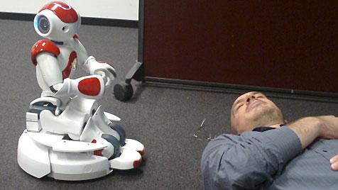 Roboter aus Linz wacht über ältere Menschen (Bild: Fontys University of Applied Science)