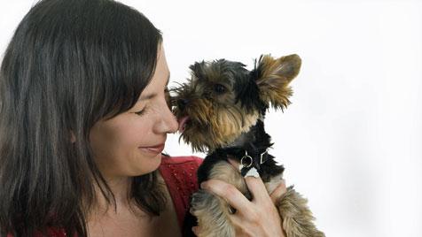 Grundregeln für die Hygiene zwischen Mensch und Hund (Bild: thinkstockphotos.de)