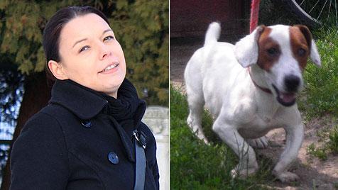 Neue Plattform für Halter von Hunden mit Behinderung (Bild: Katharina Hengl)