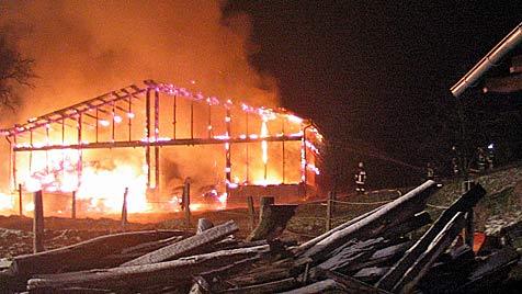 Etliche Großbrände in OÖ und NÖ halten Florianis auf Trab (Bild: APA/FF SCHWANENSTADT)
